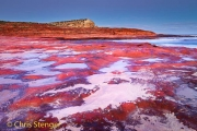 Kust landschap west Australie - Coastal landscape western Australia