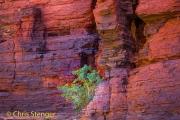Rotswand Karijini - Cliffs Kirijini