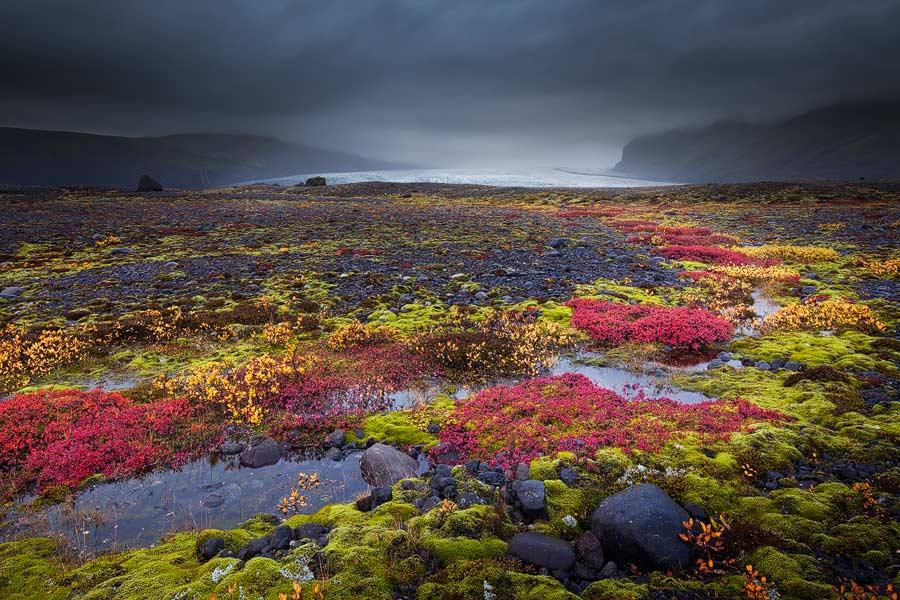 Herfstkleuren in IJsland
