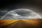 Regenboog - Rainbow