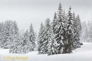 Dolomieten - Dolomites
