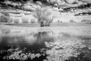 Meer - Lake
