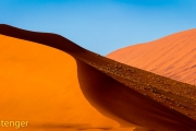 Woestijn-Desert