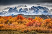 Herfst in Torres de Paine - Autumn in Torres del Paine