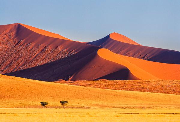 Namibië bestaat vooral uit woestijn en halfwoestijn met uitermate fraaie en woeste landschappen.