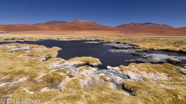 Dit is een van de vele zoutmeren in de hoge Andes. Het contrasteert sterk met de kleurrijke lavavelden op de achtergrond
