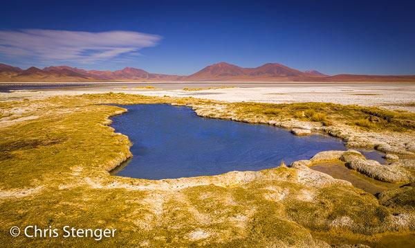 Zoutmeertje op de zoutvlakte Salar de Huasco op de Altiplano in het noorden van Chili