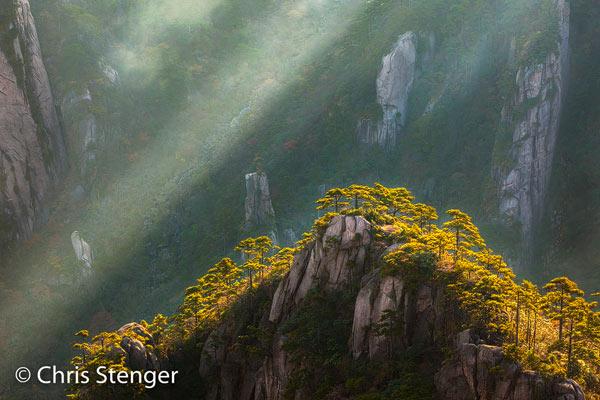 De foto werd net na zonsopkomst gemaakt toen het piekje op de voorgrond met Huangshan dennen net in de zon lag