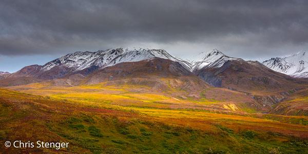 We bezochten Denali begin september. De herfst is net begonnen en de kleuren waren geweldig