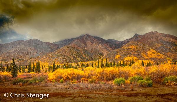 Eind september zijn de herfstkleuren langs de Glenn Highway tussen Anchorage en Glennallen op het hoogtepunt. Deze foto maakte ik in de buurt van Sheep Mountain waar de weg door het hooggebergte loopt. Canon 5Ds R met TS-E 24mm f/3.5L II ISO100 1/50sec bij f/9.0 vanaf statief