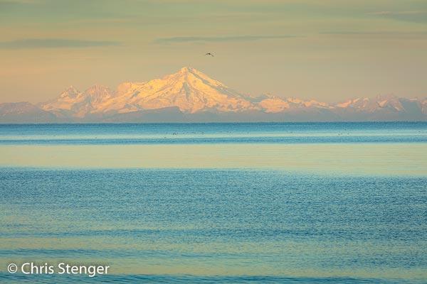 De actieve vulkaan Mount Redoubt is vanuit de plaats Kenai fraai te zien aan de overzijde van de Cook inlet. Canon 5Ds R met 100-400mm L IS II USM ISO100 1/25sec bij f/10 vanaf statief