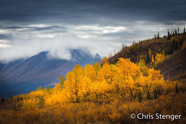 September is een prima maand om Alaska te bezoeken. Minder toeristen dan in de zomer en de buitengewoon fraaie herfstkeuren gaven onze fototrip Alaska iets extra's.