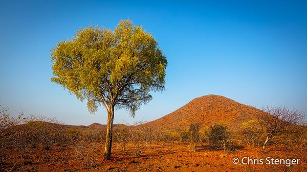 Het gebied van de Kunene rivier in het noorden van Namibië is minder droog dan de meer zuidelijke gebieden.