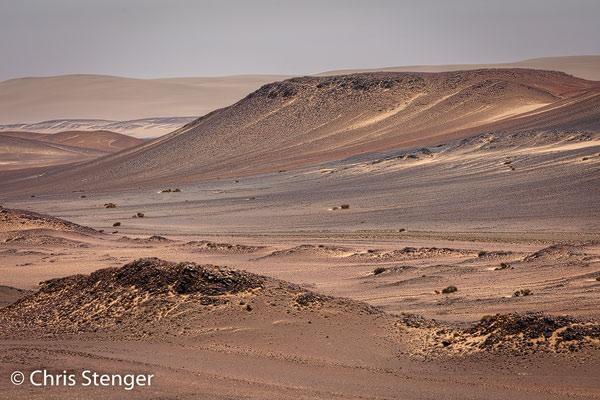 De woestijn in het Skeleton Coast Park in Namibië bestaat uit lage heuevels van zand en grint