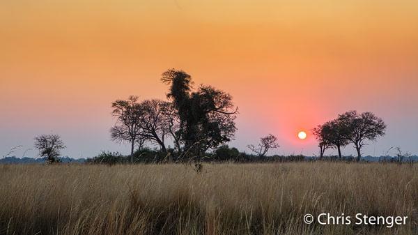 De wildstand in het Mudumu nationaal park in het noorden van Namibië herstelt zich momenteel snel van de achteruitgang die een gevolg was van de oorlogen die dit gebied in de 80-er en 90-er jaren van de vorige eeuw troffen
